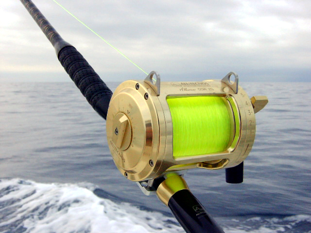 Hi-Catch IGFA Fluorescent Yellow
